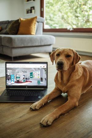 Mit dem morgigen Start beweist das Fachforum Heimtier Digital seine Kompetenz in Sachen Heimtiere auf nationalem Parkett. Ein kurzer Mausklick ermöglicht die Messeteilnahme bequem von Zuhause. (Foto: Martin)