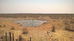 Voyage en Namibie 15-10-2016