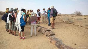 Voyage en Namibie le 14-10-2016