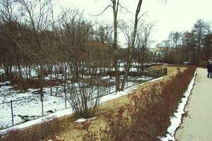 湯川公園(北)