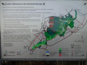 Infotafel des Landkreises zu einem der wertvollsten Feuchtgebiete Norddeutschlands