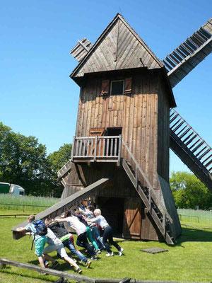 Goldbachschüler drehen in Polen eine alte Bockwindmühle aus dem Jahre 1603 in den Wind.