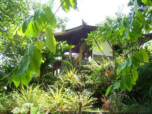 Blick aus dem Garten auf einen Bungalow