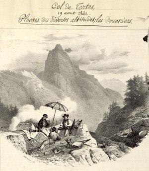 Page du manuscrit / Source : Médiathèque André Labarrère Pau