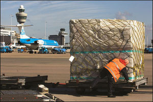 AMS experienced a rather moderate cargo growth last year