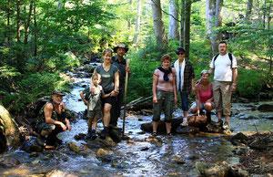 Wandern im Bayrischen Wald