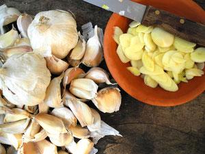 Garlic Knoblauch