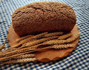 Bio-Brot Korn an Korn