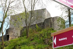 """Die Weidelsburg am Premiumwanderweg """"Habichtswaldsteig"""""""