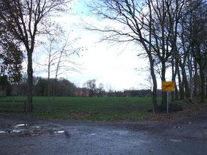 Barghorn, Barghorner Weg:    ...hier soll massiv ins LSG hineingebaut werden, Fotos H. Lobensteiner