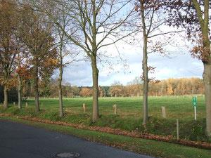 """Hankhausen, Loyer Weg, ... hier ist eine """"Lückenbebauung"""" im Landschaftsschutzgebiet geplant"""