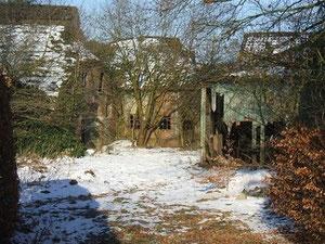 Morbider Charme einer alten Ammerländer Hofstelle: auch sie mußte weichen! Fotos: H. Lobensteiner