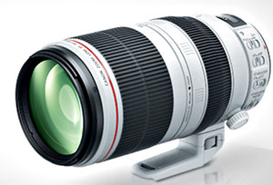 Canon EF 100-400/4.5-5.6L IS II USM (с сайта компании)