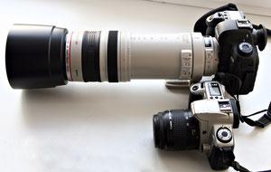 Canon EF 100-400/4.5-5.6L
