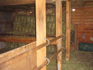 In unserem alten Stall können Pferde auch untergestellt werden. Übernachtungsmöglichkeiten gibt es auch für die Reiter im Heu.