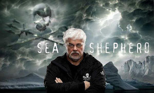Tribute to Captain Paul Watson , the great sea shepherd