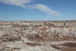 Foto: Petrified Forest