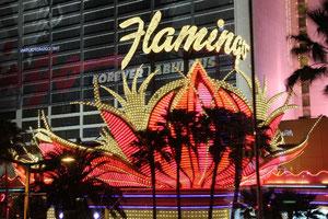 Foto Hotel Flamingo