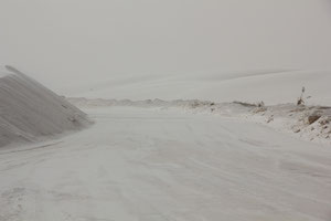 Foto in White Sands