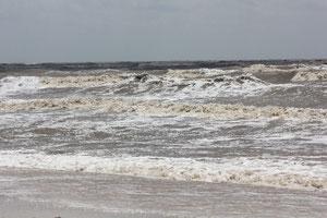 Foto Strand von Holly Beach