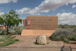 Foto. Petrified Forest