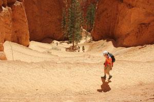 Trail im Bryce Canyon