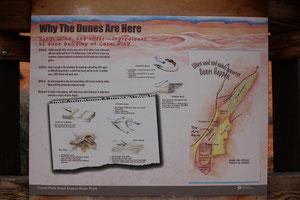 Fot: Pink Sand Dunes State Park