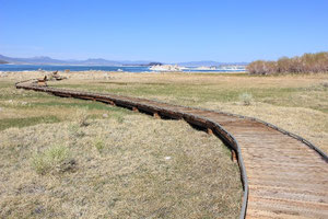 Foto: Weg am Mono Lake
