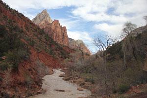 Foto Zion Nationalpark