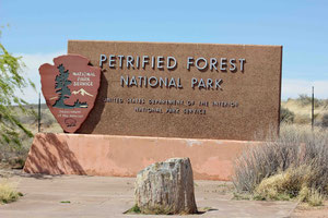 Foto: Petrified Forest NP