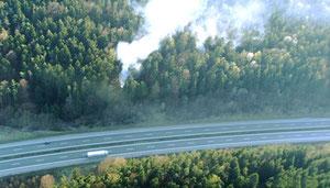 In der Oberpfalz besteht akute Waldbrandgefahr (Foto: Regierung der Oberpfalz)