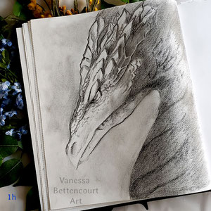 #dragon, dragon, dragon sketch, sketch, sketchbook