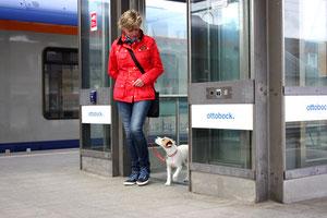 Gläserner Aufzug – Eine Herausforderung die geübt sein will