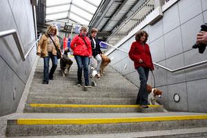 Beim Gehen von Treppen muss das Team besonders gut harmonieren