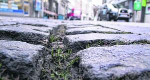 Wächst bald nur noch Gras in der Innenstadt? Die Diskussion um den Einzelhandel in Stolberg ist voll entbrannt.