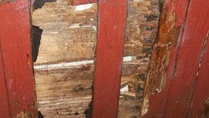 Die Holzwände des Pavillons in venwegen weisen bereits große Löcher auf, durch die man fast ins Gebäudeinnere greifen kann. Foto: Stolberger Zeitung/Nachrichten