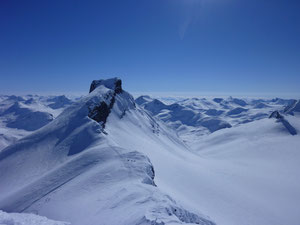 Store Bjørn Jotunheimen Fjellskitour