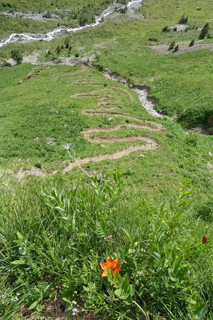 Glärnisch, Vrenelisgärtli, Chalttäli, Nordwand, N-Wand, Abstieg, Normalweg, Glärnischhütte