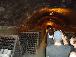 барселона экскурс, экскурсии из барселоны, монтсеррат+винные погреба