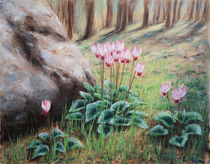 Forest Cyclamen. Oil on canvas, 40x50 cm, 03-2011