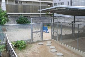 BOCALAN CLUB  / TAKADA DOG SCHOOL