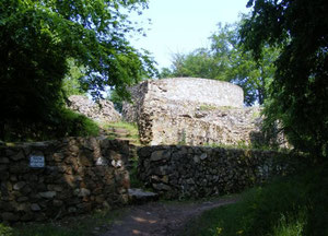 Burgruine Tannenberg