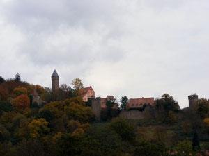 Blick auf die Burg Hirschhorn