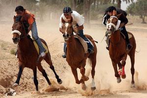 Vorendscheid für das jährliche Berberrennen in Tunis