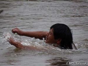 Los guaraníes se ven forzados a cruzar peligrosamente el río agarrándose a un fino cable para conseguir alimentos. © MPF/Survival