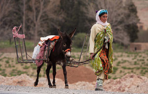 Las mujeres bereberes recorren kilómetros cada día para llevar el agua a sus aldeas. Ellas sufren mucho más que los hombres los efectos del cambio climático. / David Rosen