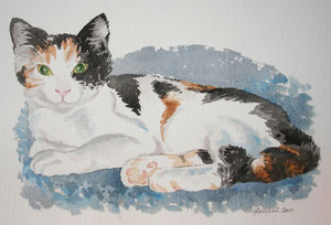 chat tricolore en aquarelle