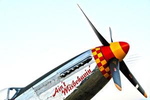 """Ain't Misbehavin' II "" North American Mustang P-51 D"