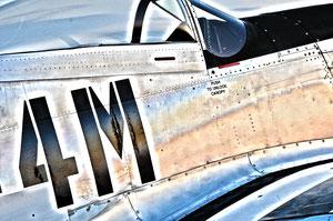 """4M"" North American Mustang P-51 D"