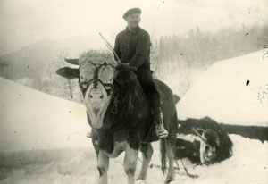 "Luthern Bad, Hinter Enzi, Josef Peter ""Enzi Sepp"" reitet Muni mit Mistschlitten, Winter 1961 oder 1962  (LW 7)"